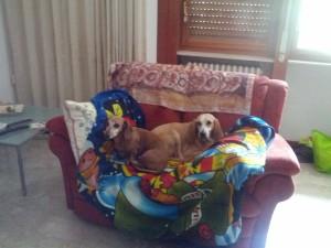 kira-penny-divano