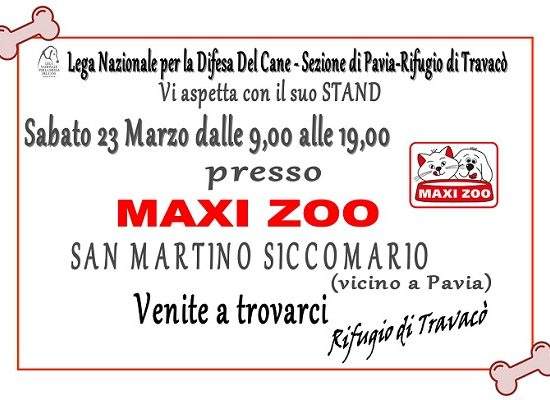Maxi Zoo – Raccolta fondi e pappe