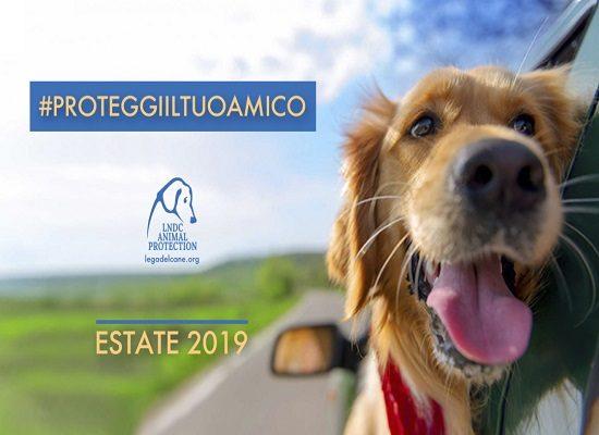 #proteggiiltuoamico – Estate 2019